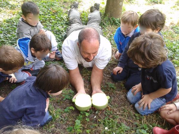 Annunci corsi di formazione corso orti scolastici e for Corso progettazione giardini