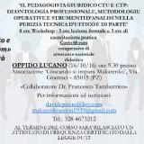 "Workshop: ""Il Pedagogista Giuridico CTU e CTP"""